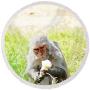 Oil Painting - A Monkey Eating An Ice Cream Round Beach Towel