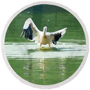 Oil Painting - Pelican Flapping Its Wings Round Beach Towel