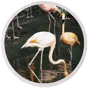Oil Painting - The Head Of A Flamingo Under Water In The Jurong Bird Park In Singapore Round Beach Towel