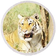 Oil Painting - An Alert Tiger Round Beach Towel