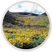 Okanagan Valley Sunflowers 1 Round Beach Towel