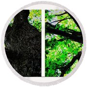 Old Barks Diptych - Deciduous Trees Round Beach Towel