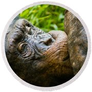 Old Chimp Round Beach Towel