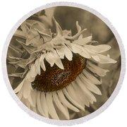 Old Fashioned Sunflower Round Beach Towel