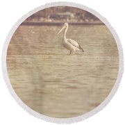 Old Pelican Photograph Round Beach Towel