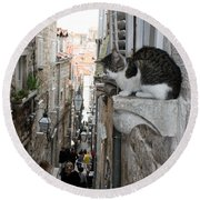 Old Town Alley Cat Round Beach Towel