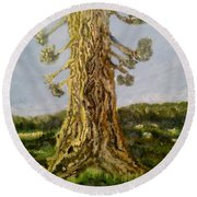 Old Tree In Spring Light Round Beach Towel