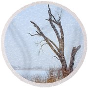 Old Tree In Winter Round Beach Towel