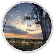 Old Tree Sunset Over Oyster Bay Round Beach Towel