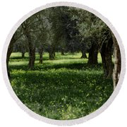 Olive Grove Color Italy Round Beach Towel