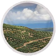 Olive Trees In A Field, Ubeda, Jaen Round Beach Towel
