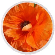 Olympia Orange Poppy Round Beach Towel