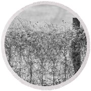 On The Fence Bw Round Beach Towel