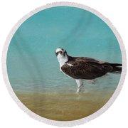 On The Shore - Osprey Round Beach Towel