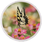 On The Top - Swallowtail Butterfly Round Beach Towel