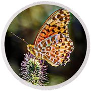 On The Wings Of A Butterfly... Round Beach Towel