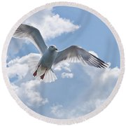 On The Wings Of A Gull Round Beach Towel