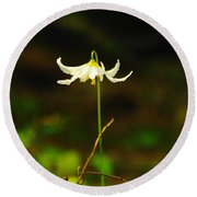 One Lily Almost Alone Round Beach Towel