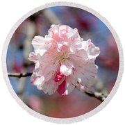 One Pink Blossom Round Beach Towel by Carol Groenen