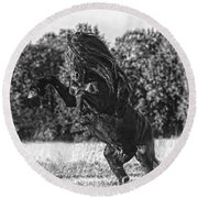 One Trick Pony Round Beach Towel