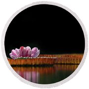 One Water Lily Round Beach Towel