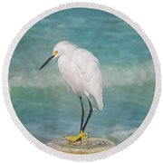 One With Nature - Snowy Egret Round Beach Towel