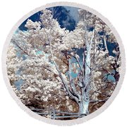 Ontario Summer Color Infrared Round Beach Towel