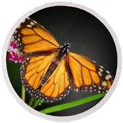 Open Wings Monarch Butterfly Round Beach Towel