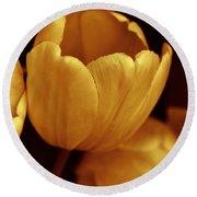 Opening Tulip Flower Golden Monochrome Round Beach Towel
