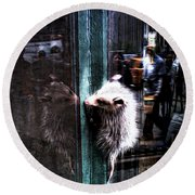 Opossum In The City Round Beach Towel