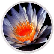 Orange And Blue Lily...   # Round Beach Towel