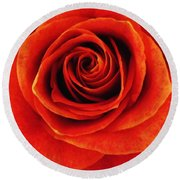 Orange Apricot Rose Macro With Oil Painting Effect Round Beach Towel