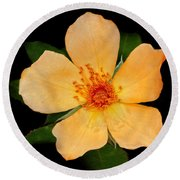 Orange Blossom Round Beach Towel