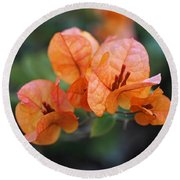 Orange Bougainvillea Round Beach Towel