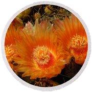 Orange Cactus Round Beach Towel