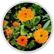 Orange Country Flowers - Series I Round Beach Towel