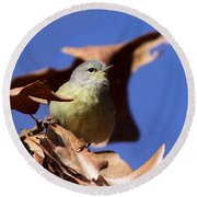 Orange-crowned Warbler - Feather Lite Round Beach Towel