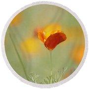 Orange Crush - California Poppy Round Beach Towel
