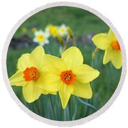 Orange Daffodils Flowers Spring Garden Round Beach Towel