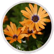 Orange Daisy Round Beach Towel