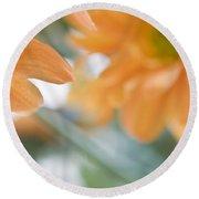 Orange Design. Paintrly Chrysanthemum  Round Beach Towel