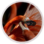 Orange Flamingos Conflict Resolution Round Beach Towel
