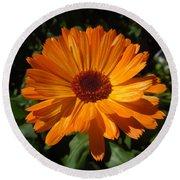 Orange Flower In The Garden Round Beach Towel