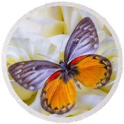 Orange Gray Butterfly Round Beach Towel
