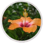 Orange Hibiscus Blossom Round Beach Towel