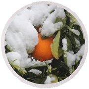 Orange In Snow Round Beach Towel