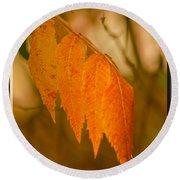 Orange Leaves Of Fall Round Beach Towel