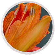 Orange Lily Round Beach Towel
