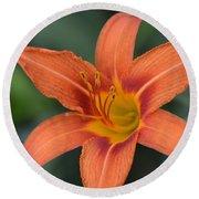 Orange Lily Photo 6 Round Beach Towel
