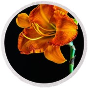 Orange Lily Round Beach Towel